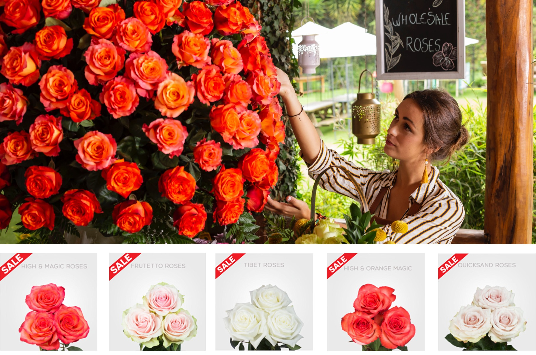 25% OFF WHOLESALE ROSES