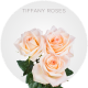 Tiffany Roses Wholesale
