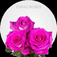 Topaz Roses