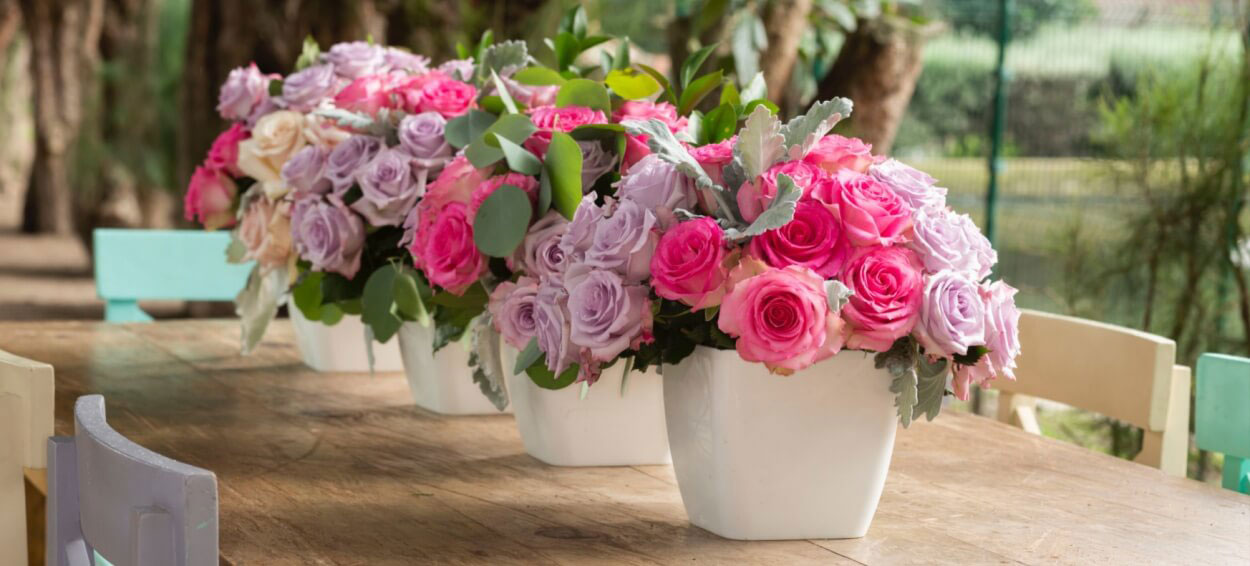 Owen Song Roses for Wedding style